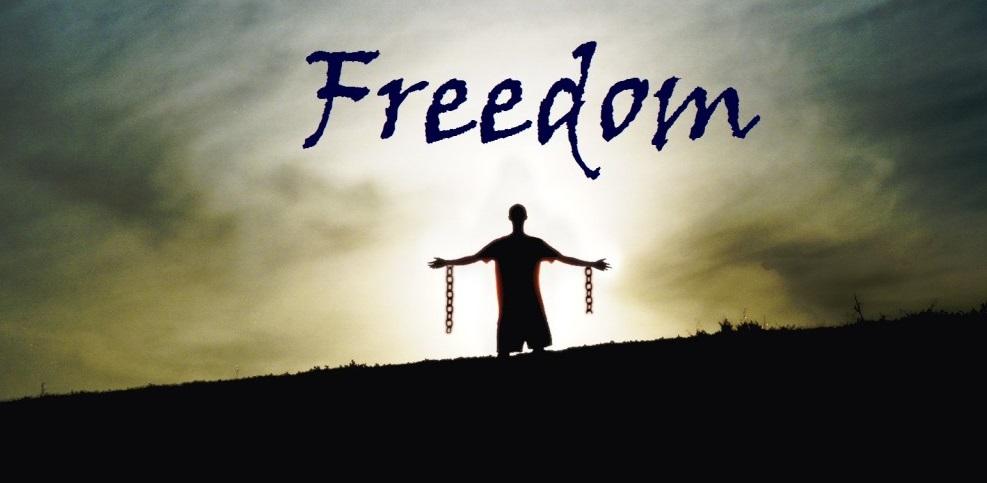 freedom-1024x768