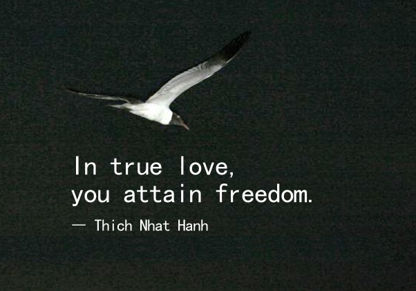 true-love-quotes-In-true-love-you-attain-freedom-quotes-Thich-Nhat-Hanh-Quotes