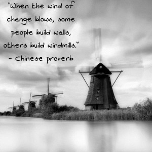 When the wind of change blows some people build walls others build windmills